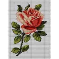 Kanwa 18x24 RÓŻA haft krzyżykowy