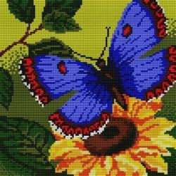 Kanwa 18x24 MOTYL haft krzyżykowy